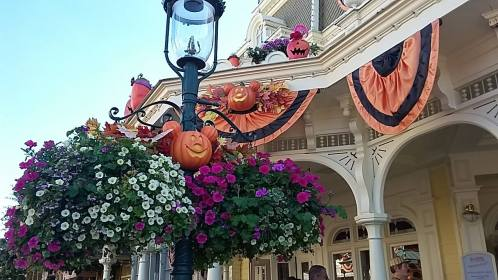 They were all decorated for Halloween which was aweosome BECAUSE THEY DON'T CELEBRATE HERE!